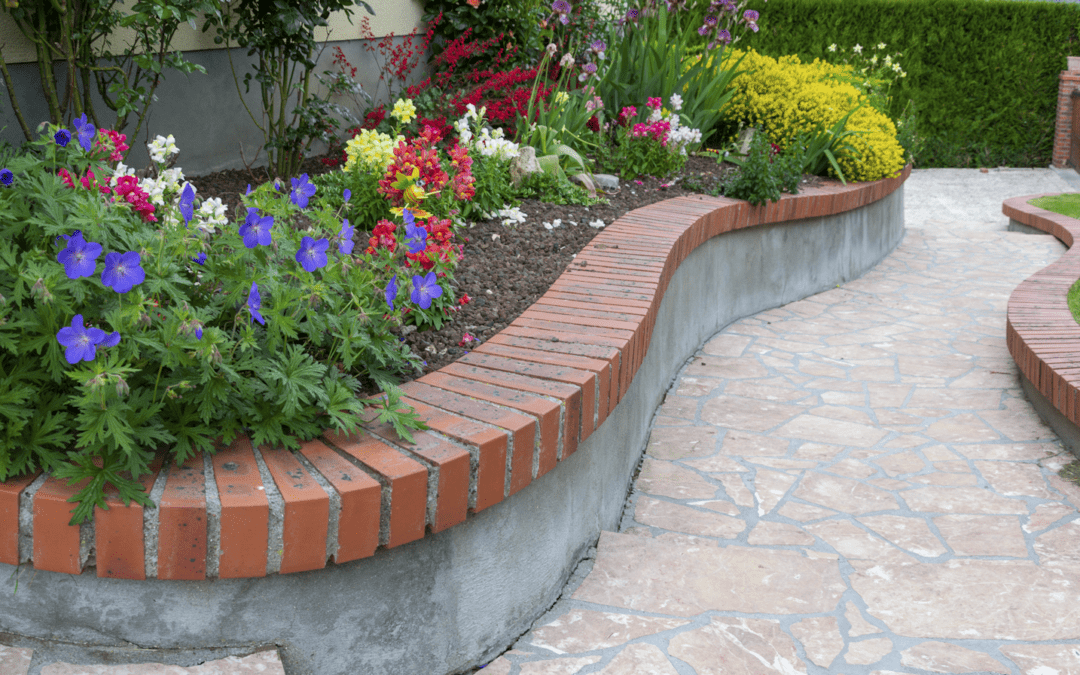 Annual Flowers to Plant In Your Yard