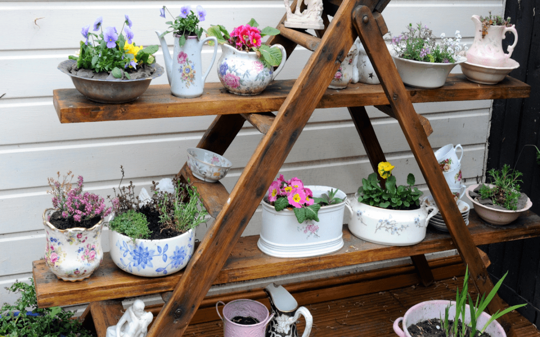 Learn About Container Gardening